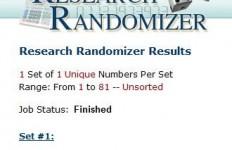 Randomizer Playmobil