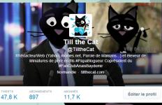 Twitter Till the Cat