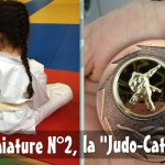 "Miniature N°2, la ""Judo-Cat"""
