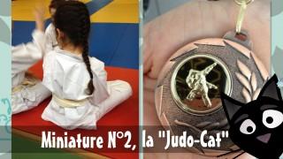 Miniature N°2 judokate ba