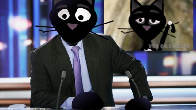 Télé Cat