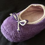 Tout savoir sur le chausson domestique