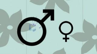 symboles sexes