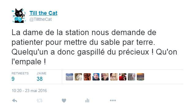 tweetcarbu9