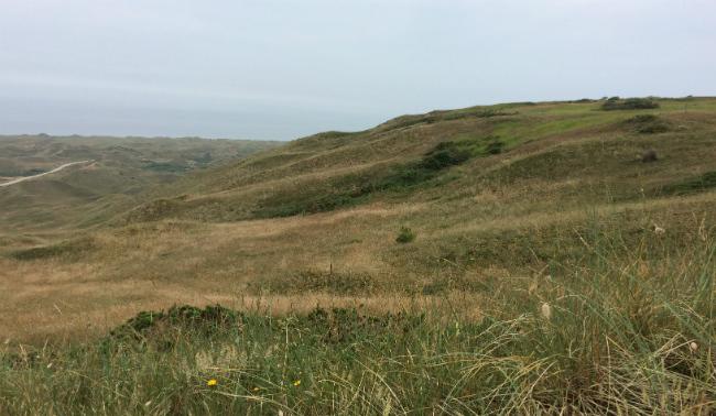 Biville Dunes 1