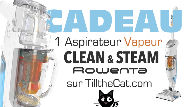Cadeau clean and steam2