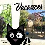 Vacances, surprises et aire de jeux